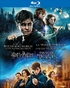 Wizarding World 9-Film Collection (Blu-ray)
