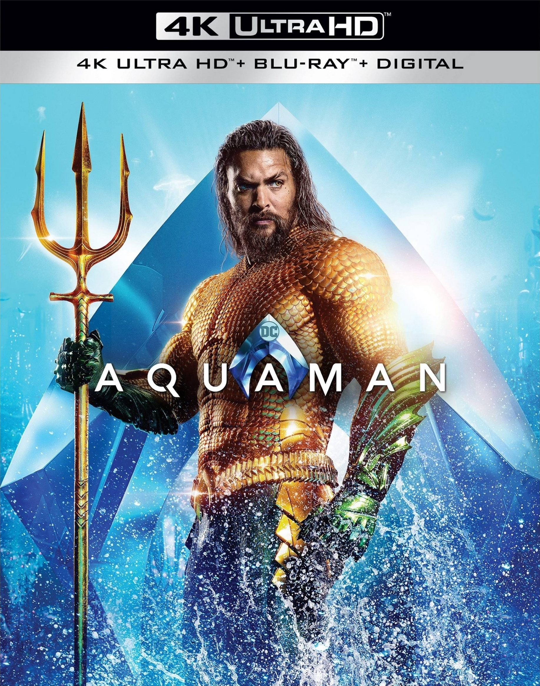 Download Aquaman (2018) IMAX 2160p HDR 10bit BluRay x265 HEVC [Org