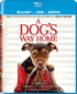 A Dog's Way Home (Blu-ray)