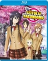 Seitokai Yakuindomo: Complete Collection (Blu-ray)
