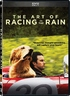 The Art of Racing in the Rain (DVD)
