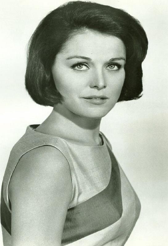joan blackman actress today