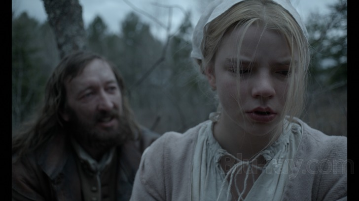 the vvitch review