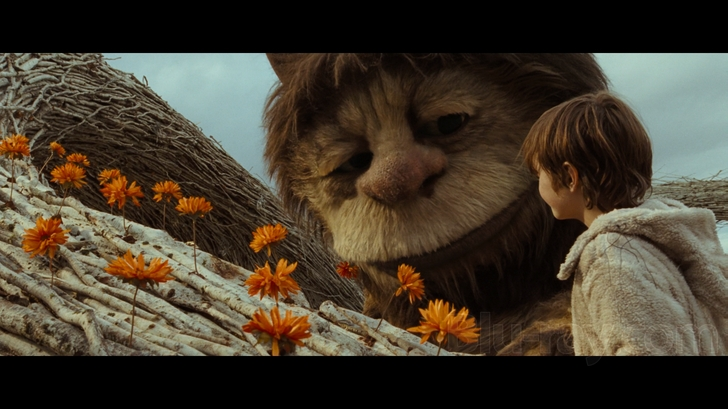 Where the Wild Things Are Blu-ray