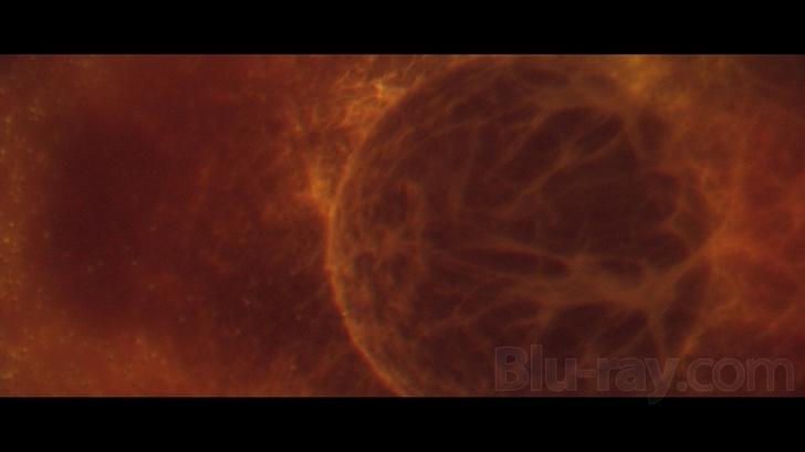 Inter the void sex scene